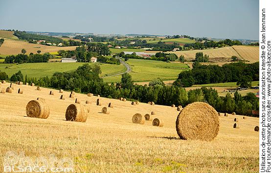 Photo bottes de foin dans un champs laplume lot et garonne 47 n64991 - Une botte de foin ...