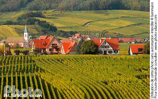 Photo : Vignoble et village de Nothalten, Bas-Rhin (67) - (ref. n18392) © Jean Isenmann