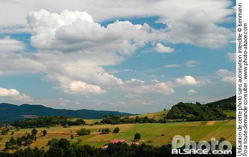 Photo paysage agricole bassemberg val de vill bas - Comptoir agricole bas rhin ...