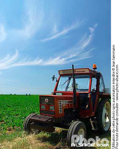 Photo tracteur dans un champ truchtersheim bas rhin - Comptoir agricole bas rhin ...