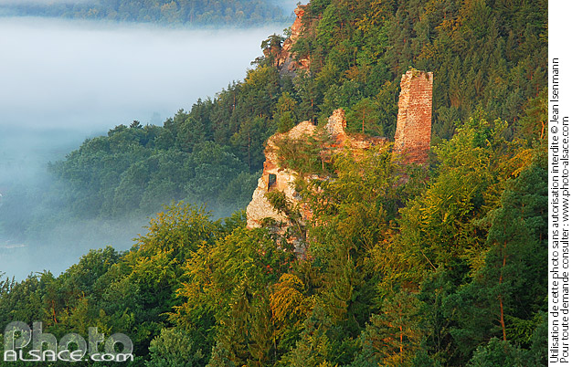 Photo : Petit Arnsbourg castle seen from Belle Vue rock