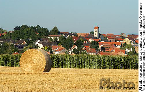 Photo : Champ et village de Truchtersheim, Bas-Rhin (67) - (ref. n28130) © Jean Isenmann
