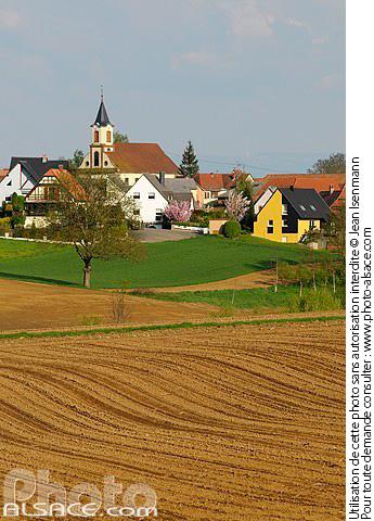 Photo champs et village de rottelsheim bas rhin 67 - Comptoir agricole bas rhin ...