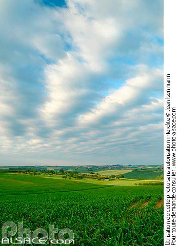Photo paysage agricole parc naturel r gional des vosges - Comptoir agricole bas rhin ...
