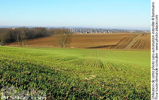 Photo paysage agricole alterberg griesheim sur souffel - Comptoir agricole bas rhin ...
