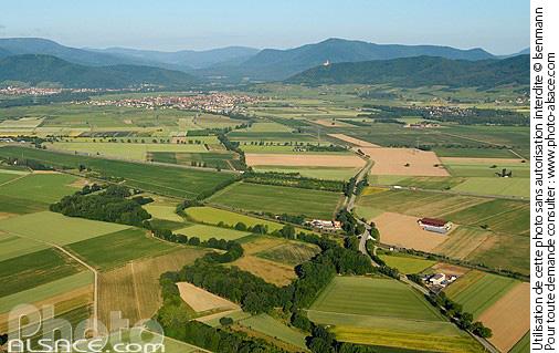 Photo plaine d 39 alsace et vue sur l 39 entr e du val de - Comptoir agricole bas rhin ...