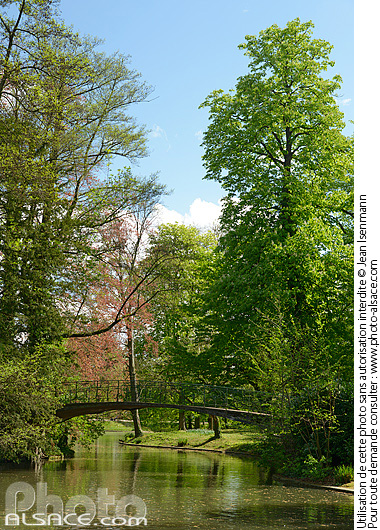 Parc de l'Orangerie au printemps, Strasbourg, Bas-Rhin (67)