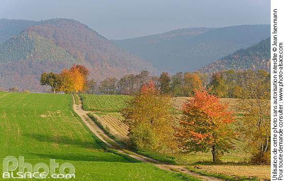 Photo paysage agricole et montagne en automne oberbronn - Comptoir agricole bas rhin ...