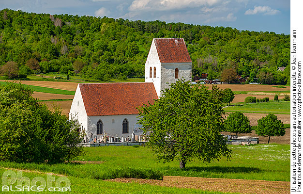Photo : Eglise Saint-Martin-des-Champs, Oltingue, Sundgau, Haut-Rhin (68) - (ref. 190522-216) © Jean Isenmann
