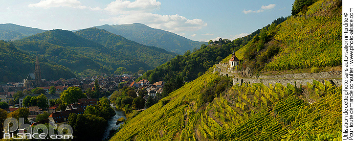 Photo : Vignoble de Rangen (Grand Cru), Thann, Haut-Rhin (68) - (ref. n58987) © Jean Isenmann