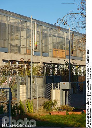 Photo cit manifeste rue des lauriers mulhouse haut rhin 68 n74328 - Cite manifeste mulhouse ...