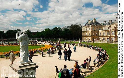 Photo jardin du luxembourg paris 75 n36121 for Arbres jardin du luxembourg