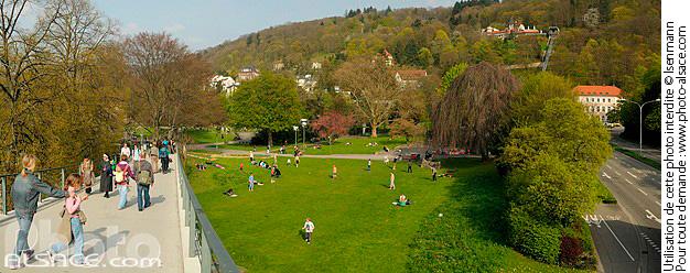 Photo stadtgarten freiburg im breisgau bade wurtemberg for Designhotel stadtgarten freiburg