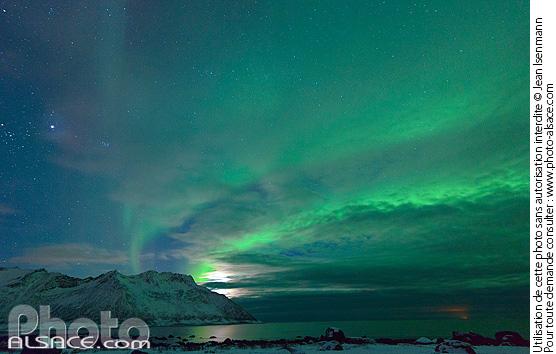 Aurore Bor�ale depuis Ballesvika, Senja, Troms, Norv�ge