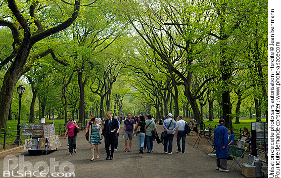 Photo : The Mall and Literary Walk, Central Park, Manhattan, New York, Etats-Unis - (ref. n62797) © Jean Isenmann