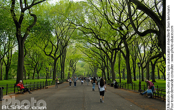 Photo : The Mall and Literary Walk, Central Park, Manhattan, New York, Etats-Unis - (ref. n62799) © Jean Isenmann