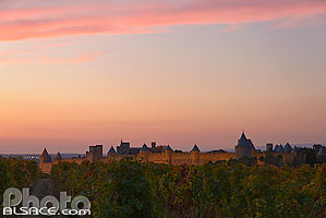 Photo : Illumination de la cité médiévale de Carcassonne et vignoble en automne, Carcassonne, Aude (11)