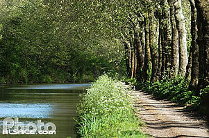 Photo : Canal du midi, Villedubert, Aude (11)