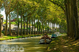 Photo : Canal du Midi, Trèbes, Aude (11)