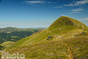 Photo : Plomb du Cantal, Saint-Jacques-des-Blats, Parc naturel régional des Volcans d'Auvergne, Cantal (15)