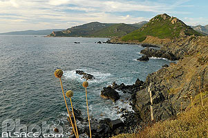 Photo : Pointe de la Parata, Ajaccio, Corse-du-Sud (2A)
