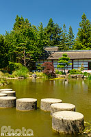 Jardin Japonais de l'Ile de Versailles, Nantes, Loire-Atlantique (44), Pays-de-la-Loire, France