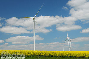Photo : Eolienne et paysage agricole, Coole, Marne (51), Champagne-Ardenne, France