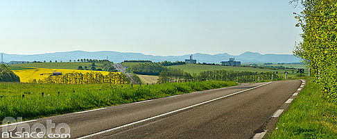 Photo : Route D955, Gondrexange, Moselle (57)