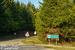Photo : Route D48 et Col du Valsberg, Dabo, Moselle (57)