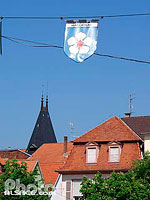 Photo : Grand'Rue, Haguenau, Bas-Rhin (67), Alsace, France