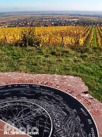 Photo : Table d'orientation dans le vignoble du Kirchberg, Barr, Bas-Rhin (67)