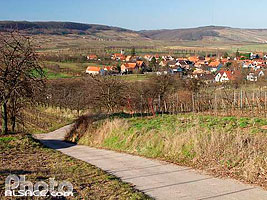 Photo : Chemin viticole et le village de Traenheim, Bas-Rhin (67)