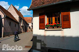 Photo : Rue de Mittelbergheim, Bas-Rhin (67), Alsace, France