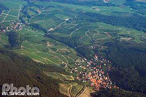 Photo : Village et vignoble de Reichsfeld vue du ciel, Bas-Rhin (67), Alsace, France