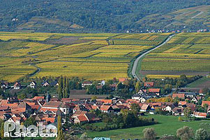 Photo : Village de Bergbieten dans le vignocle de la couronne d'Or, Bas-Rhin (67)
