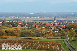 Photo : Village de Bernardswiller et la plaine d'Alsace, Bas-Rhin (67), Alsace, France