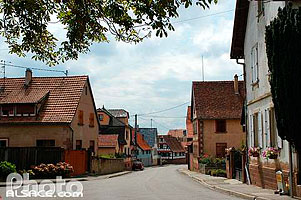 Photo : Rue de Ringendorf, Bas-Rhin (67)