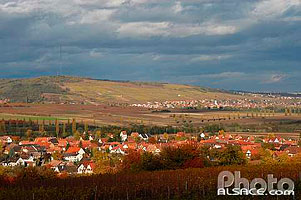 Photo : Vignoble et village de Traenheim au fond le village de Marlenheim, Bas-Rhin (67), Alsace, France