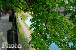 Photo : Quai Jacques Sturm, Strasbourg, Bas-Rhin (67), Alsace, France
