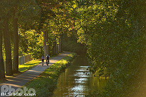 Photo : Piste cyclable le long du canal de la Bruche, Oberschaeffolsheim, Bas-Rhin (67)