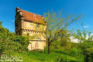Maison des Païens et Jardin des Païens, La Petite Pierre, Parc naturel régional des Vosges du Nord, Bas-Rhin (67), Alsace, France
