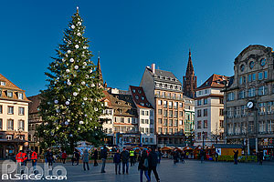 Photo : Place Kléber et le grand sapin de Noël, Strasbourg, Bas-Rhin (67), Alsace, France