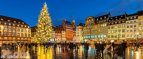 Photo : Illumination du Grand Sapin de Noël de Strasbourg, Place Kléber, Strasbourg, Bas-Rhin (67)