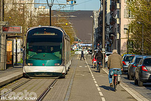 Photo : Rame de tramway et piste cyclable, Place d'Islande, Strasbourg, Bas-Rhin (67), Alsace, France