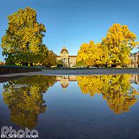 Ginkgo Biloba de la place de la République en automne et le Palais du Rhin, Quartier de La Neustadt, Strasbourg, Bas-Rhin (67), Alsace, France