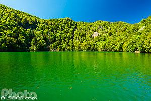 Le Lac des Perches (Sternsee) au printemps, Rimbach-près-Masevaux, Parc naturel régional des Ballons des Vosges, Haut-Rhin (68), Alsace, France