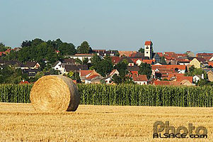 Photo : Champ et village de Truchtersheim, Bas-Rhin (67)