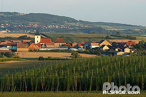 Photo : Village de Maennolsheim, Bas-Rhin (67)