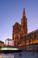Mammuthus Volantes (Artiste : Jacques Rival) au pied de la Cathédrale de Strasbourg dans le cadre de l'Industrie Magnifique 2018, Place du Château, Strasbourg, Bas-Rhin (67), Alsace, France