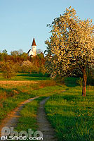 Photo : Chapelle du Kirchberg, Berg, Alsace Bossue, Bas-Rhin (67), Alsace, France